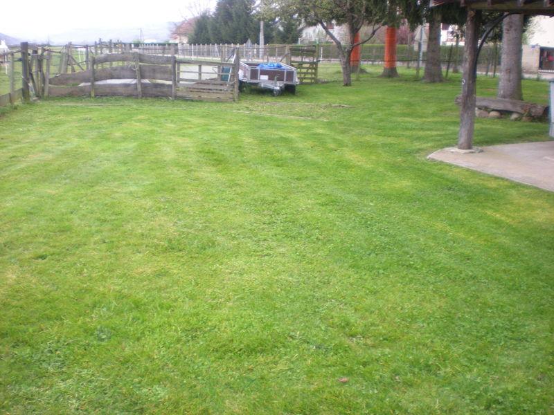 Dom 39 easy r alisations entretien de pelouse gazon for Devis tonte pelouse