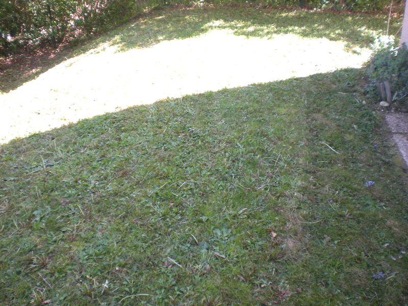 dom 39 easy r alisations tondre l 39 herbe entretenir la pelouse le gazon votre espace vert l. Black Bedroom Furniture Sets. Home Design Ideas
