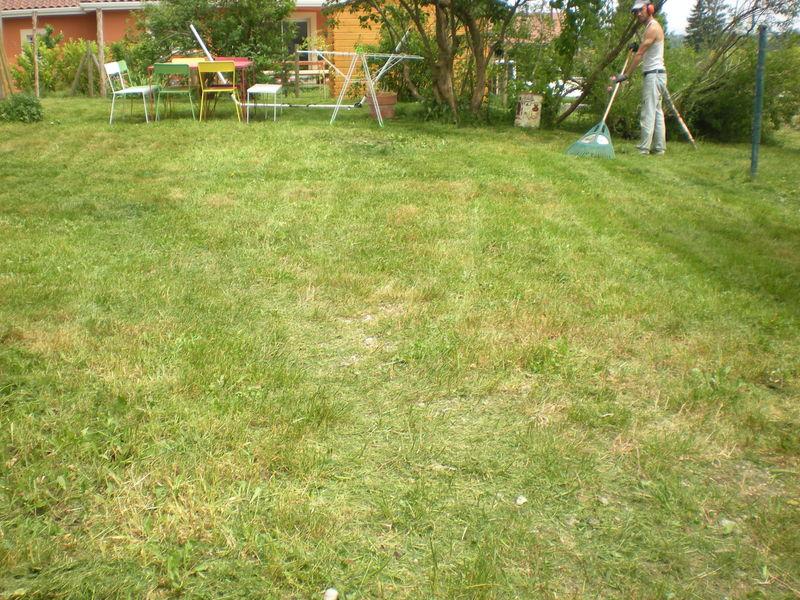 Dom 39 easy r alisations tonte de gazon meyri saint - Tondre la pelouse sans ramasser ...