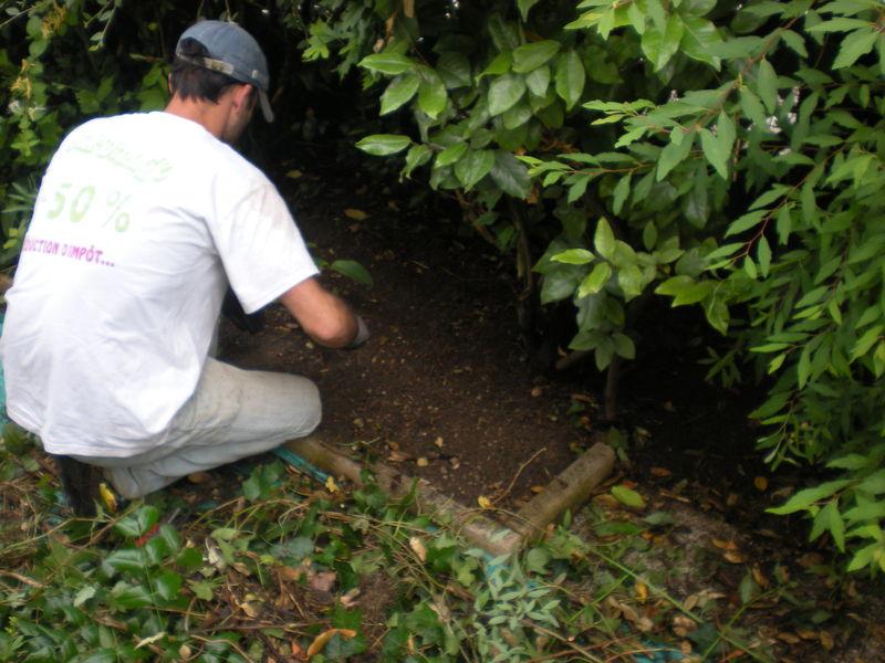 Dom 39 easy r alisations entretien de jardin bourgoin for Entretien de jardin service a la personne