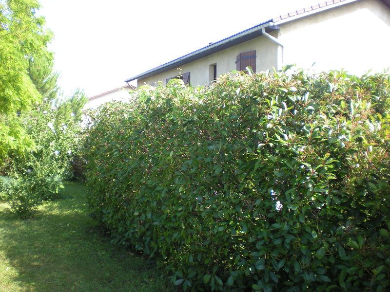 Dom 39 easy r alisations entretien d 39 espace vert for Entreprise entretien espace vert