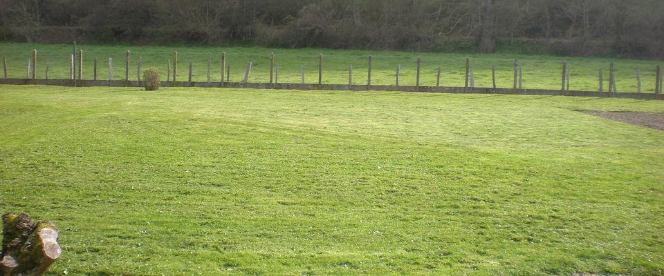 Dom 39 easy r alisations tonte de pelouse sans ramassage for Devis tonte pelouse