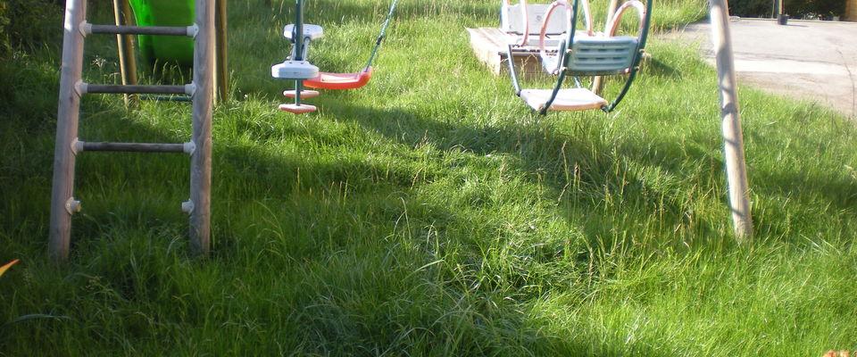 Dom 39 easy r alisations pour votre jardin tonte de for Tarif entretien pelouse