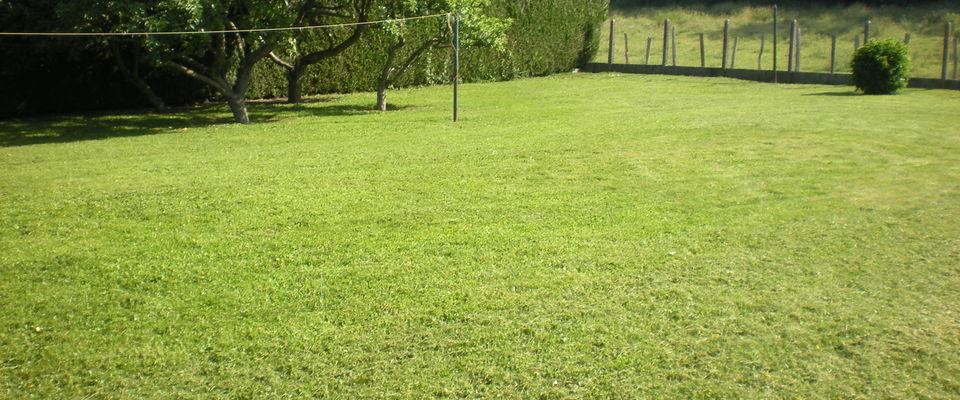 Dom 39 easy r alisations entretien de pelouse tondre du for Devis tonte pelouse