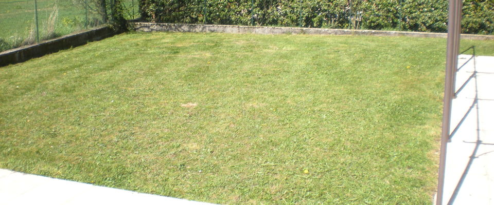 Dom 39 easy r alisations tonte de pelouse et for Tarif pour tondre pelouse