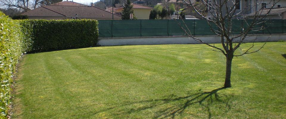 Dom 39 easy r alisations tonte de pelouse et for Devis pelouse