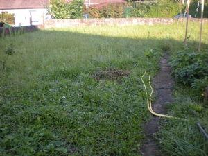 Entretien d 39 espace vert artas saint jean de bournay for Tarif paysagiste tonte pelouse